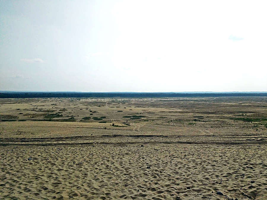 panorama pustyni błędowskiej